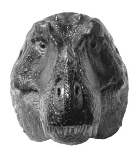 Image result for t rex have binocular vision